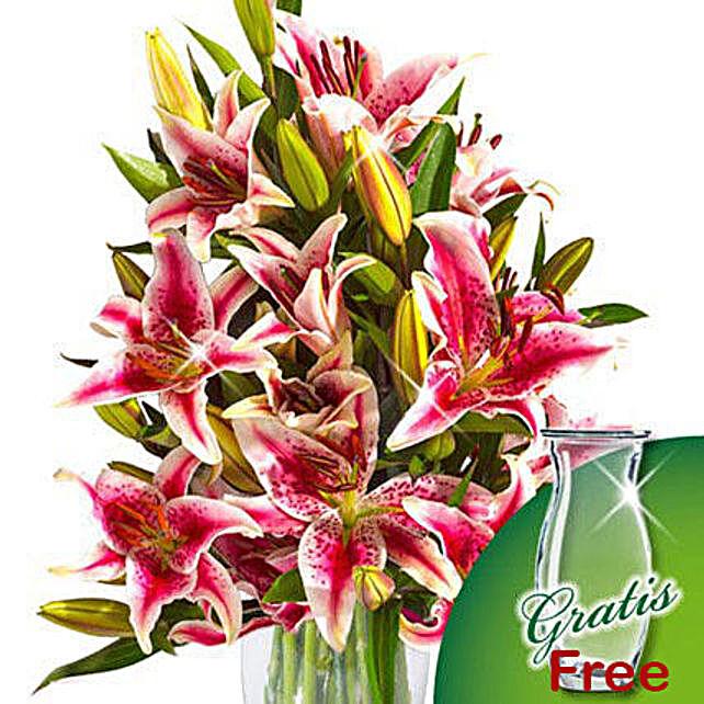10 pink Stargazer Lilies in a bunch