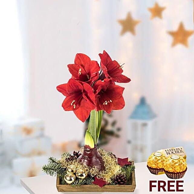 Christmas Floral Arrangement With Rochers