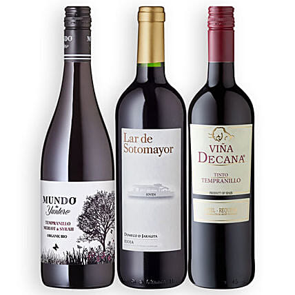Fiesta Espana with 3 Bottles of Wine:Send Gifts to Munich