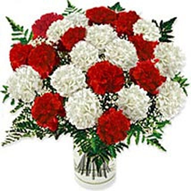 Carnation Fascinationire-ire