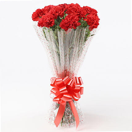 Graceful Carnations Bouquet