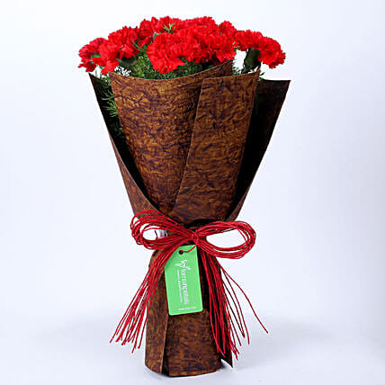 12 Red Carnations in Brown Handmade Paper