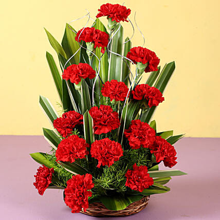 Red Carnation Arrangement Online:Send Carnations