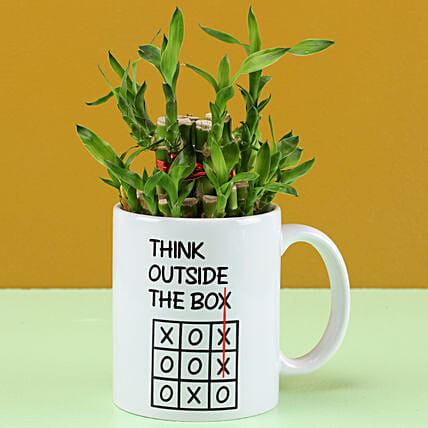 lucky bamboo in printed mug for holi online