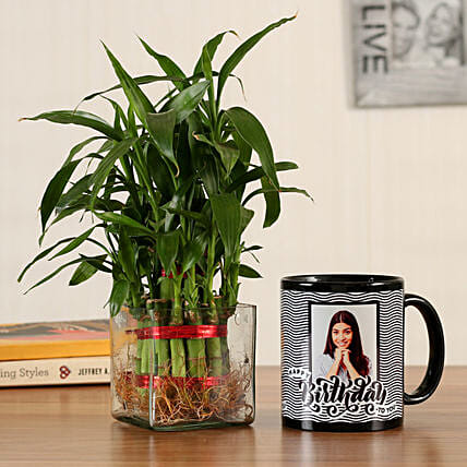 good luck plant with mug for her