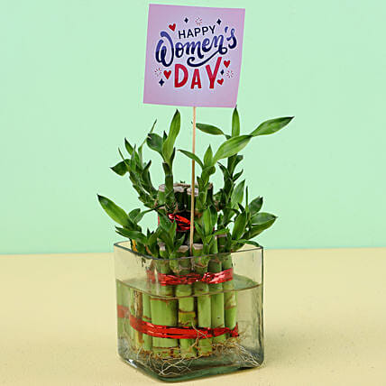 Desktop Plant with Women's Day Tag:Womens Day Plants