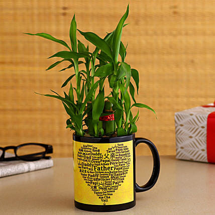 2 Layer Bamboo Plant In Father's Day Special Ceramic Mug