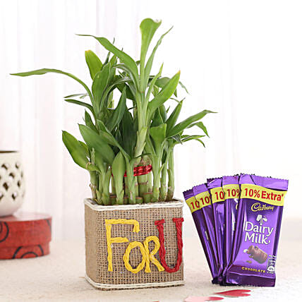 Printed Plant Pot with Chocolate for Her