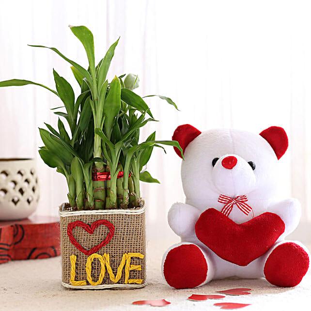 Love Plant Vase and Teddy Online:Plants N Teddy Bears