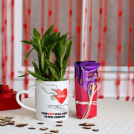 Bamboo Plant And Chocolate for Valentine