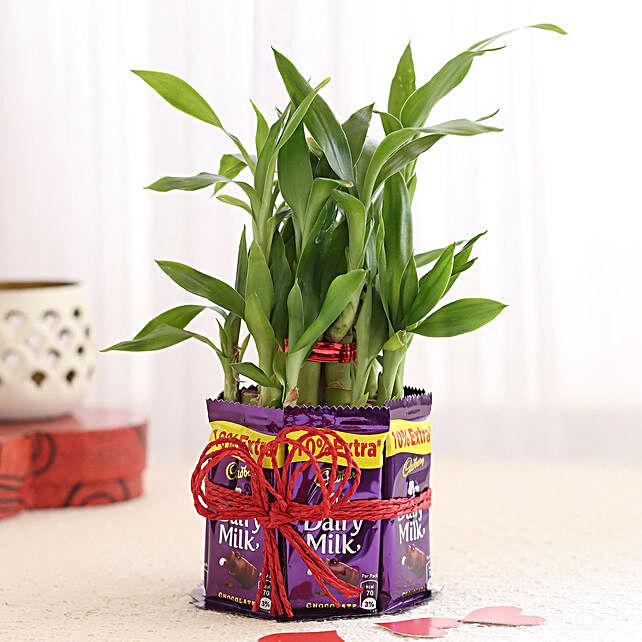 Romantic Plant Online