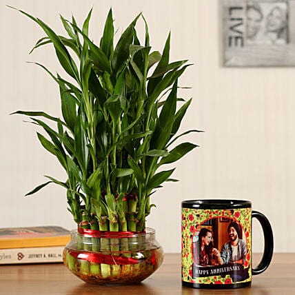 indoor plant with mug online