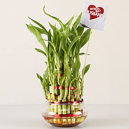 3 layer bamboo plant for husband on karwa chauth