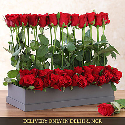red roses in rectangle box online