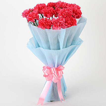 Adorable Pink Carnations Bouquet:Girlfriend Day Flowers