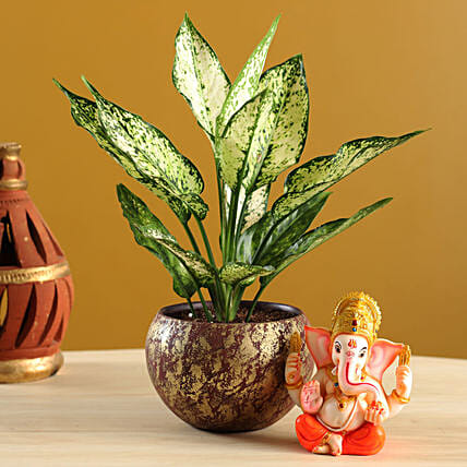 Aglaonema Plant With Mini Ganesha