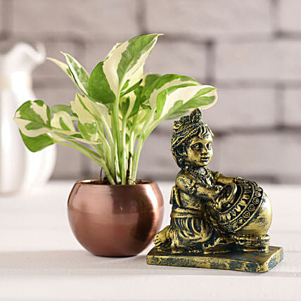 Antique Makhan Chor Idol & White Pothos Plant