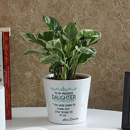 online plants for daughter day