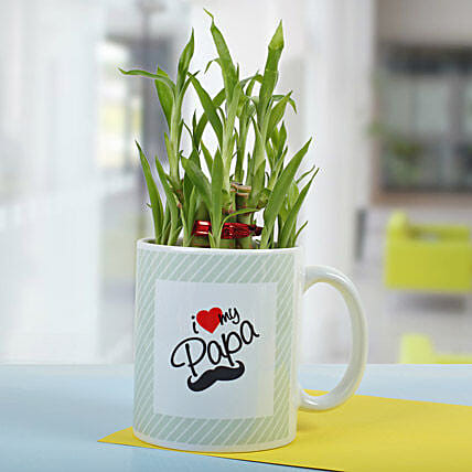 Elegant 2 Layer Plant Bamboo for Dad In Mug:Exotic Plants
