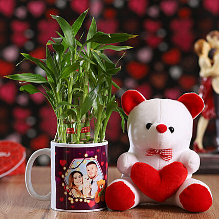 Teddy and Bamboo Plant Online