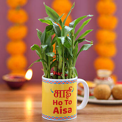 Online Plant with Mug for Brother:Bhai Dooj Gift For Brother
