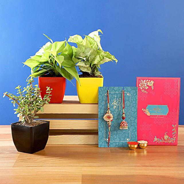 Bhaiya Bhabhi Lumba Rakhi Set and Plants