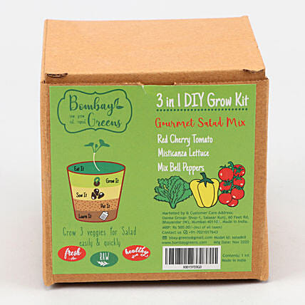 Bombay Greens DIY Gourmet Salad Kit:Medicinal Plants