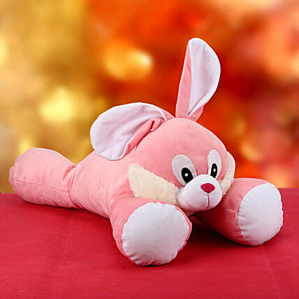 Bunny for U:Soft toys for Propose Day