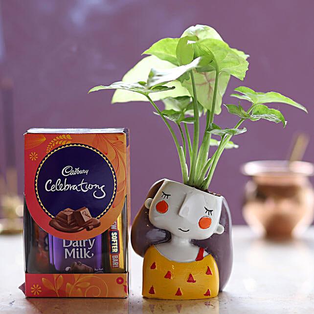 Online Cadbury Celebrations And Syngonium Plant:Resin Planters