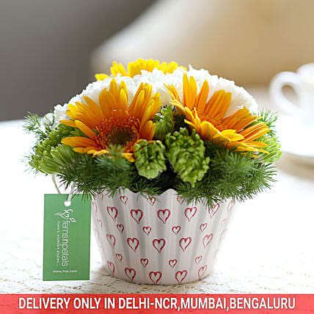 Order Online Carnations & Gerberas Cupcake Arrangement