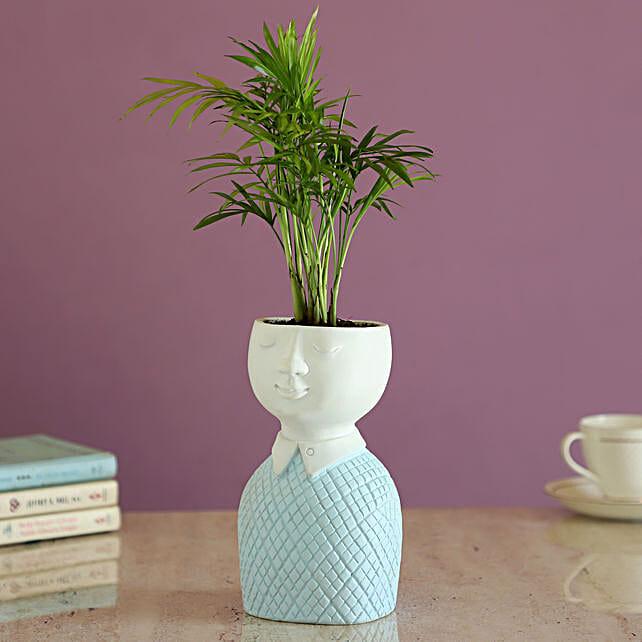 Chamaedorea Plant In Artistic Pot