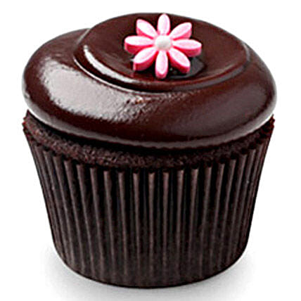 Chocolate Squared cupcake 6:Girlfriends Day Cakes