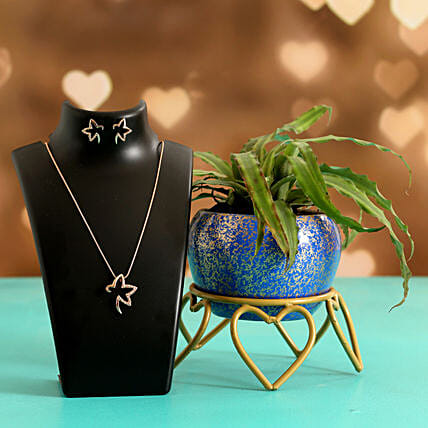 Crypthensus Plant In Pretty Blue Pot Pretty Necklace Set