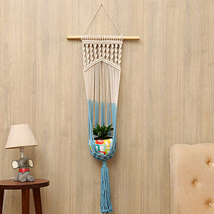 Dracaena Plant With Handcrafted Hanging Planter
