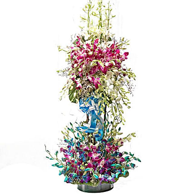 Dream Clouds - 2-3 ft high arrangement of 50 Purple Blue White Orchids.