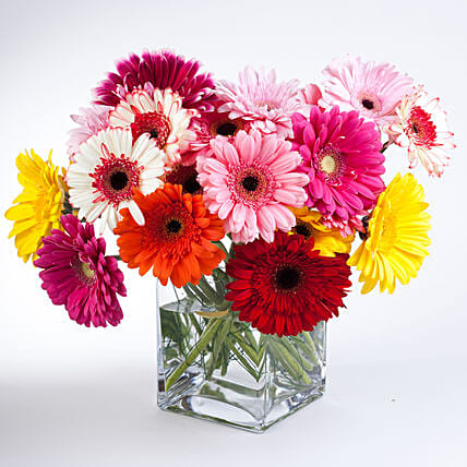 Elegant Gerberas In Glass Vase:Flower Delivery Mothers Day