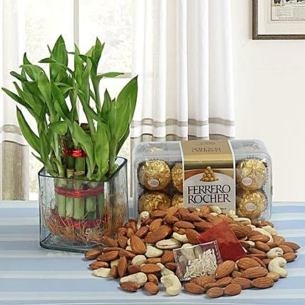 Gift hamper of lucky bamboo with chocolates and dry fruits