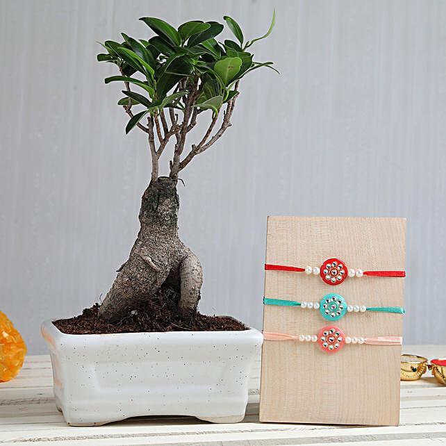 Online Plant & Rakhi Set For Bhai:Kundan Rakhi