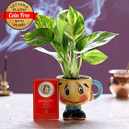 Gold Plated Coin Free With Money Plant Smiley Pot