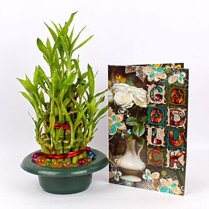 Plant and Greeting Card Online