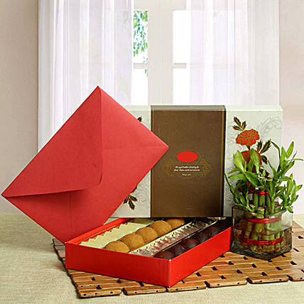 Lucky bamboo with sweets and a greeting card:Send Plants n Sweets
