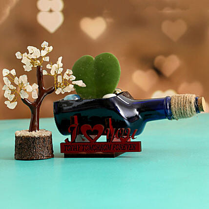 Hoya Plant In ILU Antiquity Bottle Planter Wish Tree