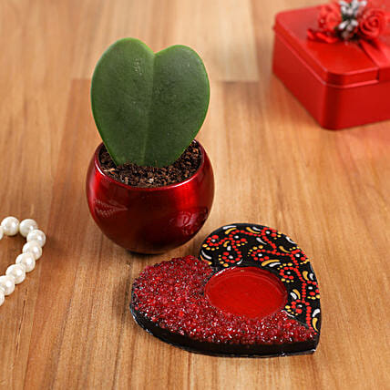 Hoya Plant In Red Pot And Mandala Heart Plate