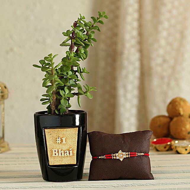 Rakhi with Plant For Bhai