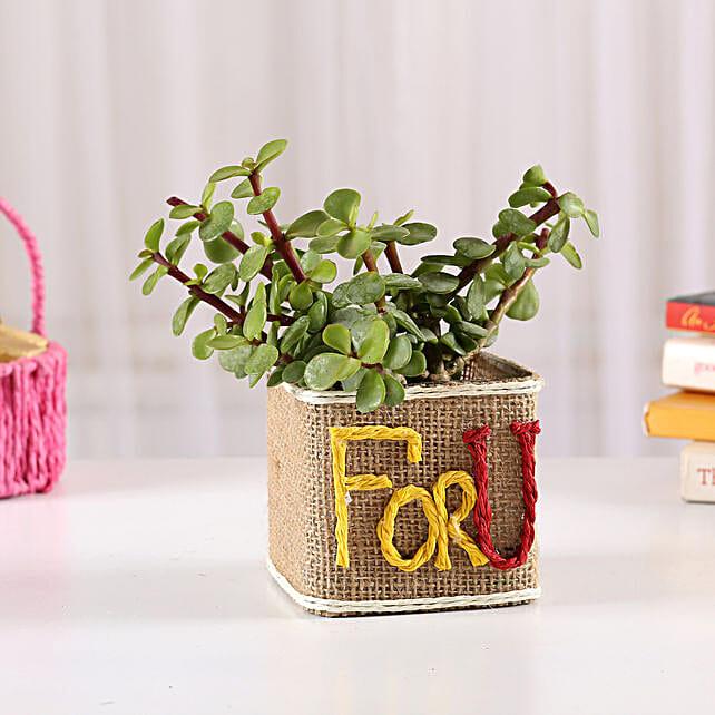 Printed Pot Plant Online