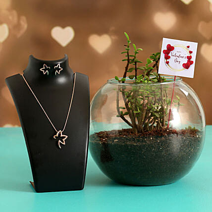 Jade Plant In Glass Vase With V-Day Tag & Jewellery Set Hand Delivery
