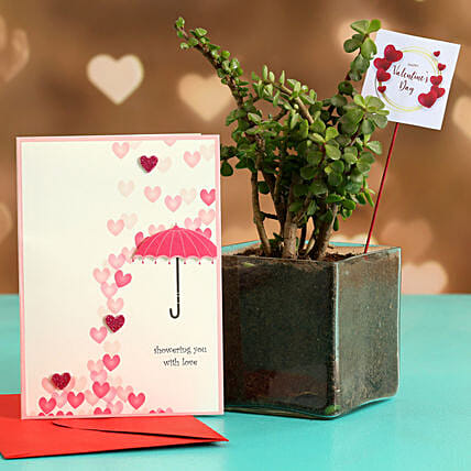 Jade Plant In Glass Vase With V Day Tag Greeting Card