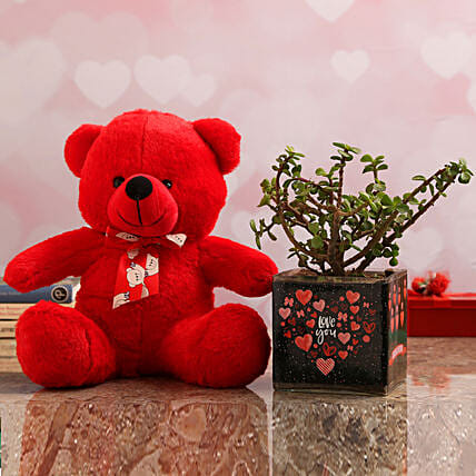 Jade Plant In Love You Vase & Teddy