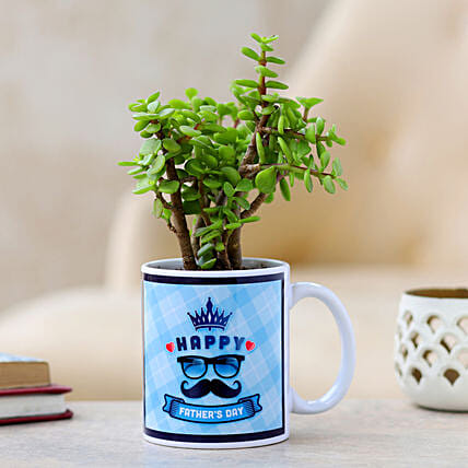 indoor plants for fathers day:Mugs Planters