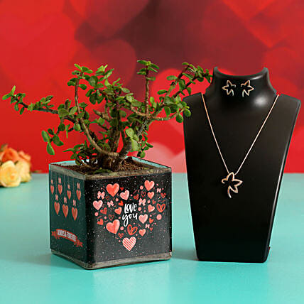 Jade Plant In Sticker Vase & Jewellery Set Hand Delivery